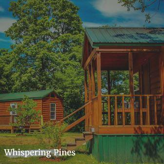 Whispering Pines Off Site Secluded Group Lodging Retreat