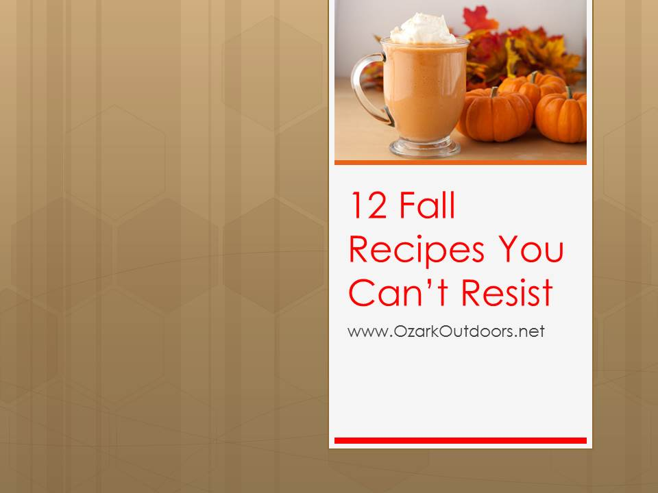 12 Fall Recipes You Can't Resist