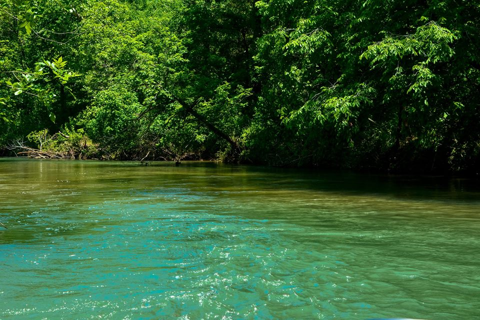 Courtois Creek Crystal Clear waters