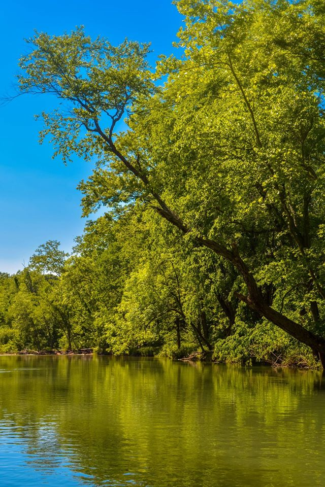 Float Trips on the Courtois River