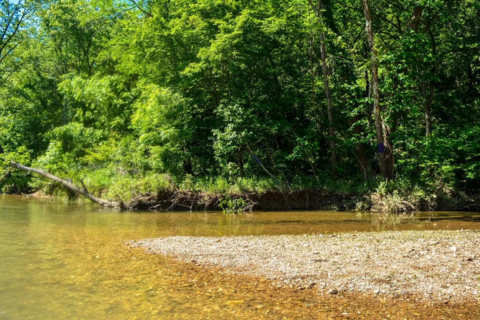 Creek style trips on the Courtois River